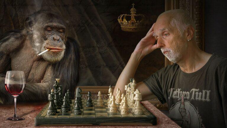 Affe spielt Schach mit Mann